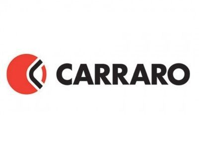 40025 Carraro drum brakes, various parts
